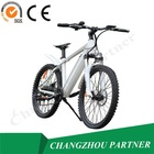 Made in China max speed 25km/h green city electric bike