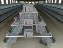 Hot sell chicken cage / chicken layer cage / chicken breeding cage