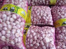 2013 cold storage Garlic HOT SALE