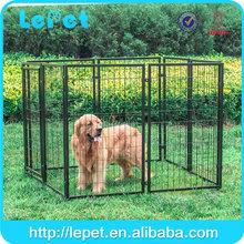 europe and the united states dog training