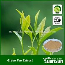 green tea extract tea polyphenol 90% 95% 98% green tea powder
