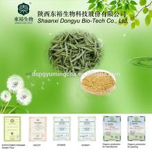 polyphenols and antioxidants in green tea caffeine free green tea extract