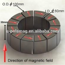 Magnetic Bearing Halbach Array segment N45 magnet (OD100mmH30mmID60mm)