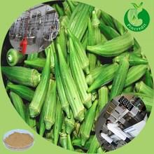 2014 new supplier lowest okra price/okra extract/Dried okra powder