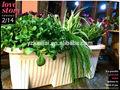 Rettangolare attraverso plastica auto- irrigazione vasi da fiori