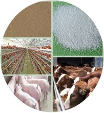 wholesales supply zinc oxide price/animal feed coated znic oxide and premix50%72%75%