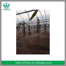 Mundo inteiro agricultura melhor popular plástico mini aspersão bocal de aspersão de água