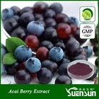 organic acai berry extract powder natural acai berry brazil