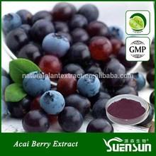 organic acai berry extract powder natural acai berry brazil