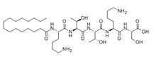 Matrixyl (Palmitoyl Pentapeptide) 214047-00-4
