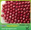 5mm ndfeb neocube magnet buckyball,sphere magnet