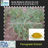 4-Hydroxyisoleucine 20% Fenugreek Extract