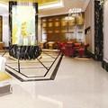 60 x 60 cm norte pisos e azulejos e azulejos com corpo duro para interior ou exterior