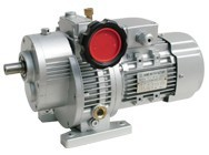 UD planetary worm gear reducer and speed variator