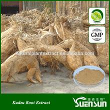 hot sale kudzu root extract pueraria mirifica powder kudzu powder