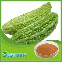 Hot sale and high quality bitter melon extract bitter melon in stock