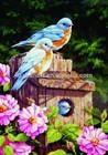 oil painting on canvas bird