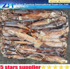 Most leading seafood price of fresh squid frozen squid bait