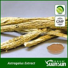 Natural astragalus root extract astragalus extract astragalus polysaccharides