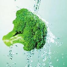 China Organic Fresh origin broccoli cut fresh broccoli blanched broccoli