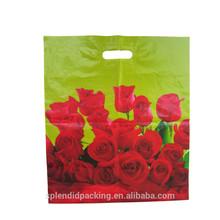 100% biodegradable plastic bag manufacturer