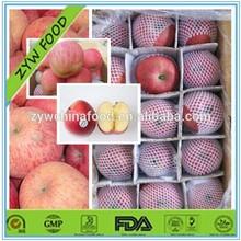 Yantai New Corp Good China Organic Sweet Fresh Red Fuji Apple for Christmas