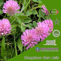 Natural High quality Red Clover P.E./Red Clover Isoflavones 8%