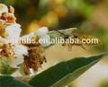 Los niños de la miel de abeja traje niño/leche y miel detergente/miel natural loción para el cuerpo