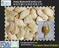 Pur et naturel de haute qualité de graines de citrouille 10:1 poudre d'extrait de