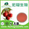 Block brown sugar cranberry extract powder fruit powder alga powder