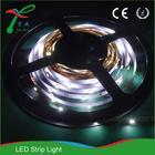 Welcome OEM ODM high intensity led strip rope light