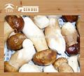 замороженный белый гриб сделано в китае