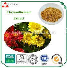 Natural Chrysanthemum Plants Extract,Chrysanthemum Extract Powder