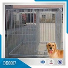 Stainless Steel Cages Dog Kennels Runs