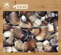 высокое качество замороженные белый гриб гриб