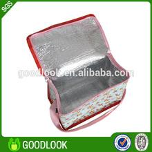 Chinese baby thermal bag breast milk storage bag