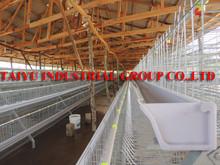 TAIYU Layer Hen Farming