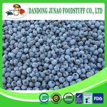 frozen blueberry raw FRUITS