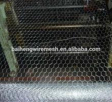 chicken breed hexagonal wire netting