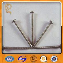 China Supplies Steel Polish Natural Long Nails