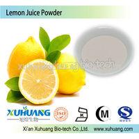 Halal,Kosher,ISO certified Natural Lemon Juice powder