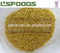 Iqf doce gelado de milho preço por tonelada de milho
