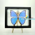 Fousen(039) natura& arte naturale specie arte e da collezione