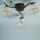 CZ80005B-3 ring lighting leeds factory shop Modern Flower Ceiling Lights