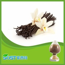 Supplier supply hot sale pure vanilla extract with competitive price