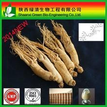 Pure natura panax ginseng extract panaxoside powder 80%