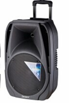 "12"" Professional Portable Battery Active Plastic Molded Cabinet Speaker Box With USB SD FM Portable Trolley Speaker"