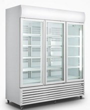 0~10 degree frost free glass door pepsi fridge(Tropicalized)