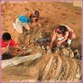 crianças brincar com areia jogo escavar fósseis de dinossauros