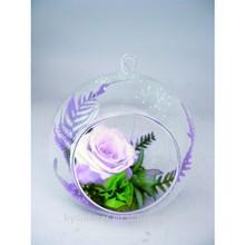 Rose with circle vase